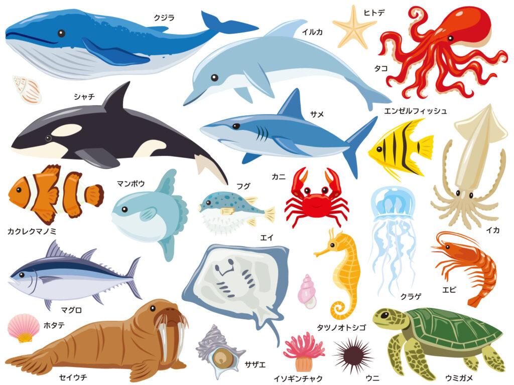 スウェーデン語の単語帳、魚・水の生き物