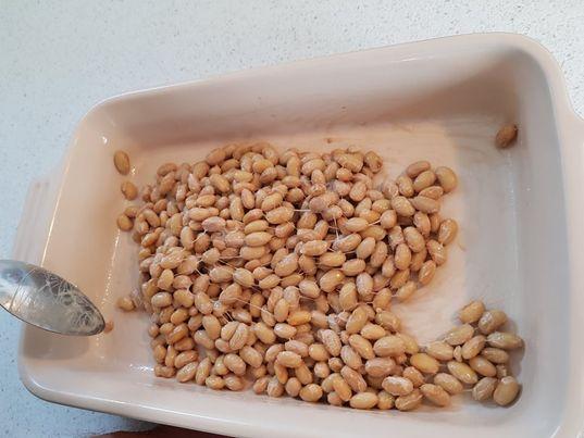 スウェーデンで納豆を作ってみた結果